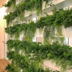 All Green Decor Jardim Vertical Permanente 22