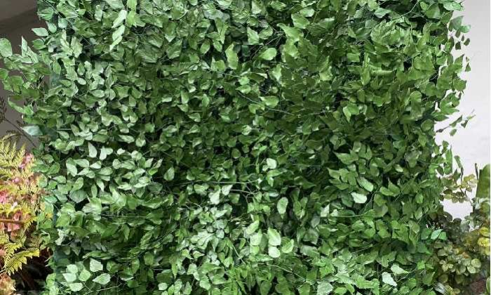 All Green Decor Jardim Preservado Home